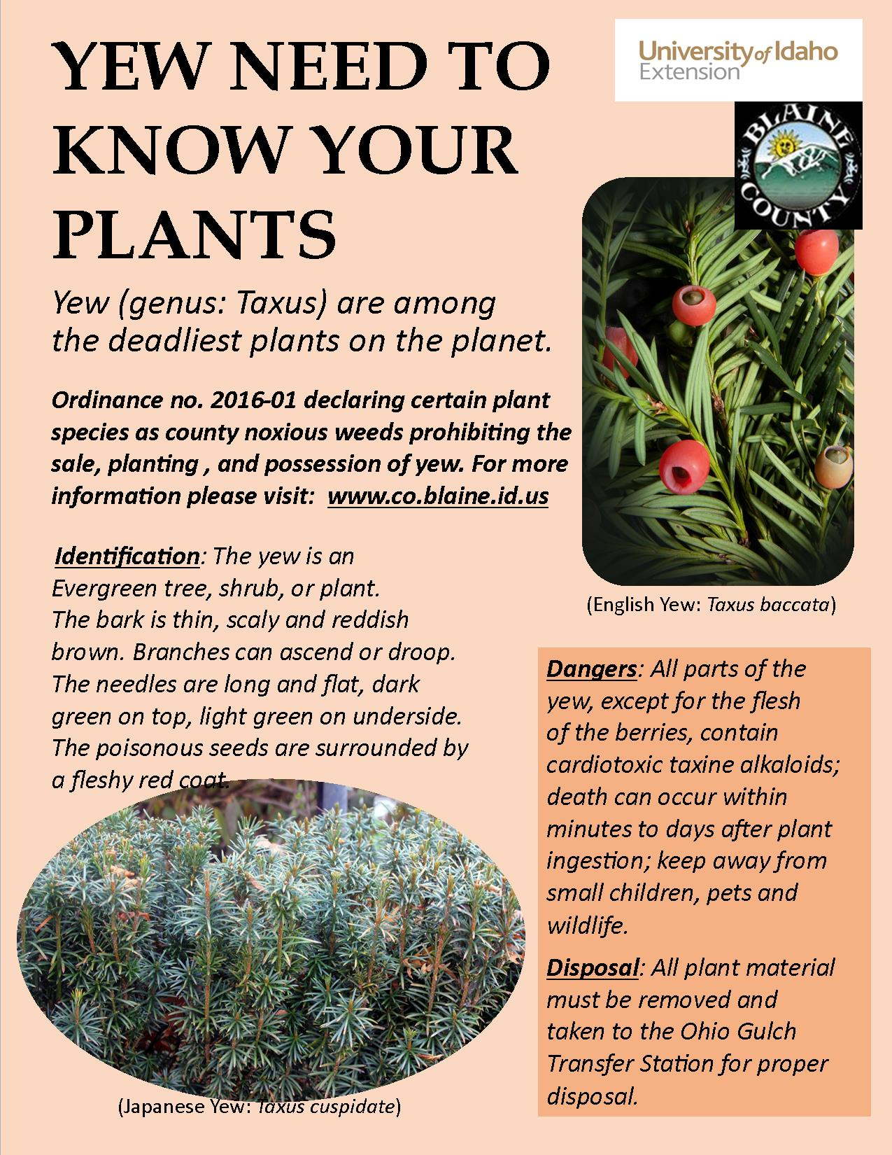 Yew Need to Know Your Plants brochure